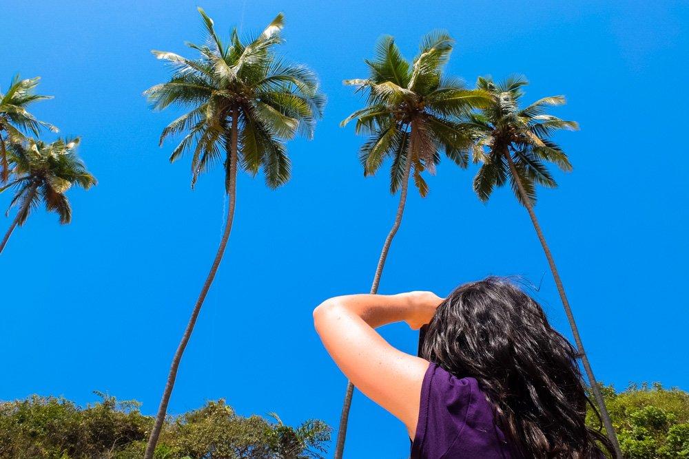 Palmas pludmalē - Labākās budžeta viesnīcas Phu Quoc salā