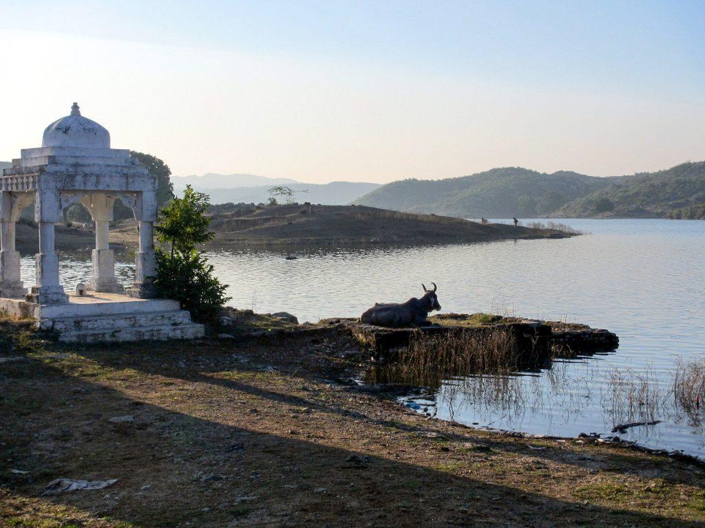 Indijas laukos - Indijas vīza