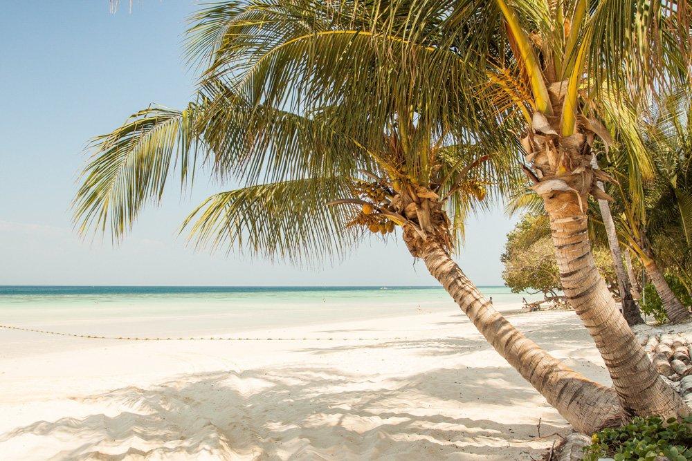 Pludmale un palma - Labākās budžeta viesnīcas Lombokas salā, Indonēzijā