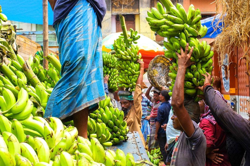 Banānu tirgū Kolkatā, Indijā