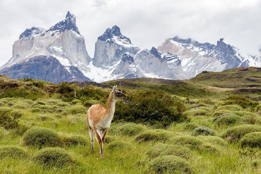 Kalnu ainava Torres del Paine parkā, Patagonijā